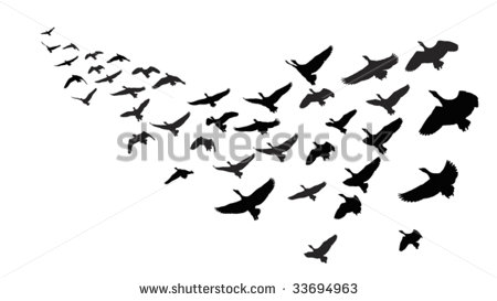 Geese Migration clipart #5, Download drawings