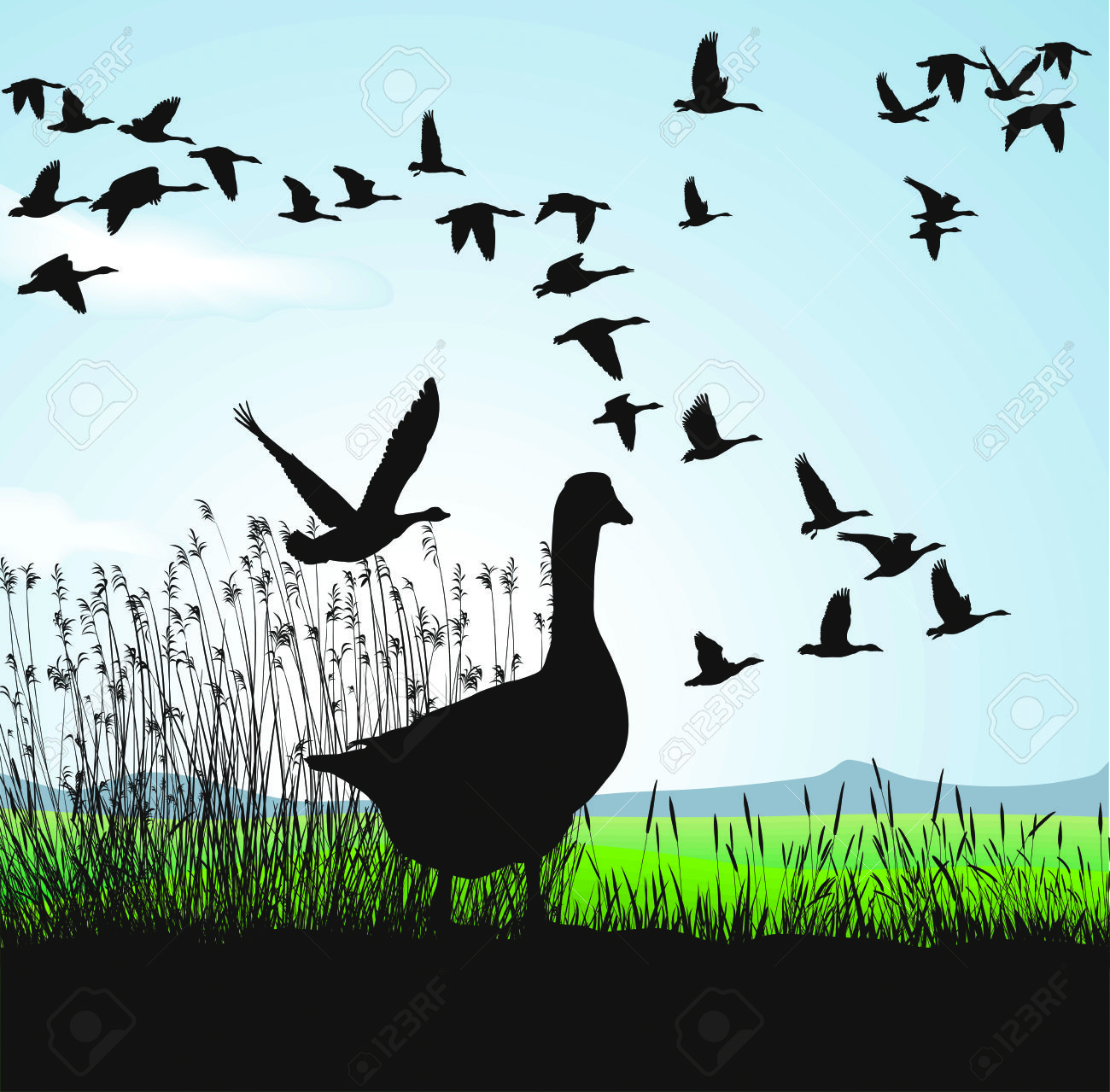 Geese Migration clipart #1, Download drawings
