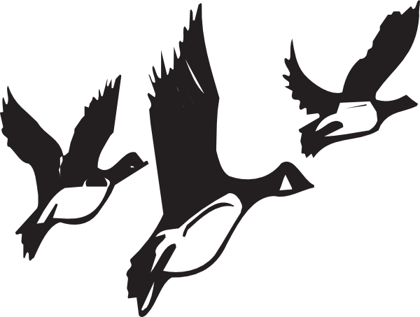 Geese Migration clipart #15, Download drawings