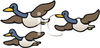 Geese Migration clipart #14, Download drawings