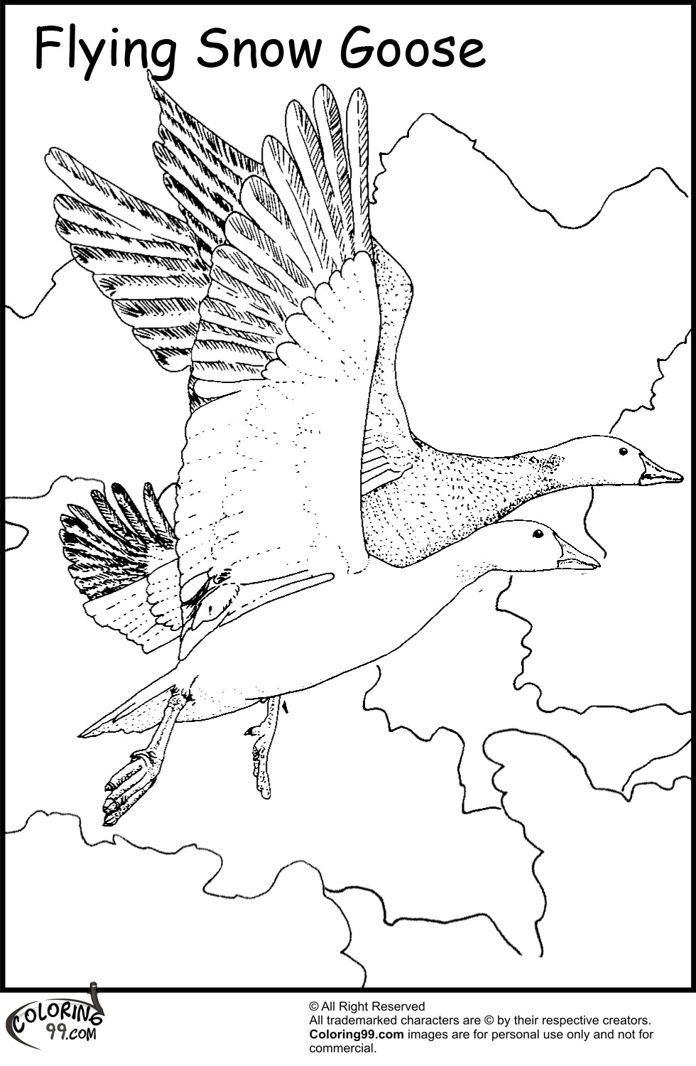 Migration coloring #19, Download drawings