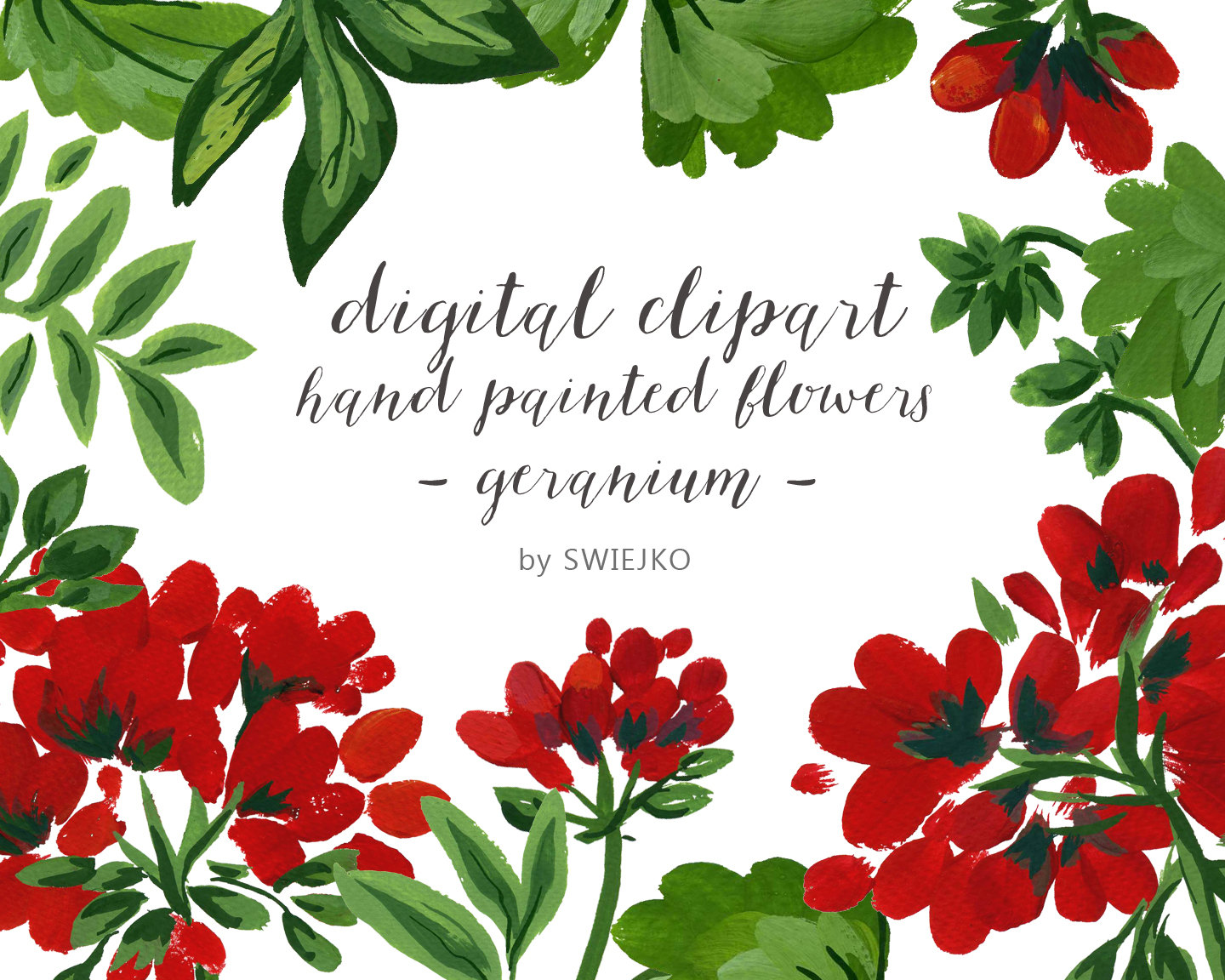 Geranium clipart #11, Download drawings