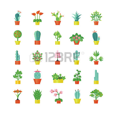 Geranium clipart #12, Download drawings