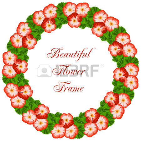 Geranium clipart #19, Download drawings