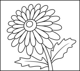 Gerbera coloring #8, Download drawings