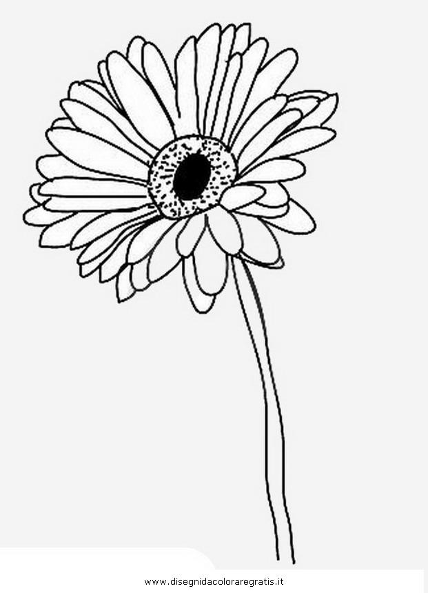 Gerbera coloring #19, Download drawings