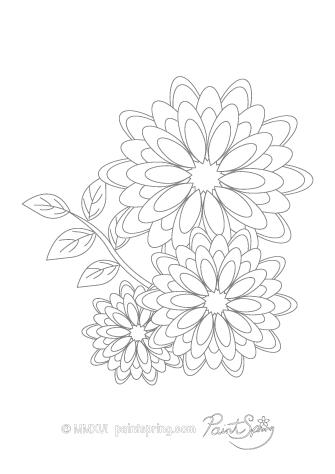 Gerbera coloring #15, Download drawings