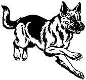 German Shepherd clipart #17, Download drawings