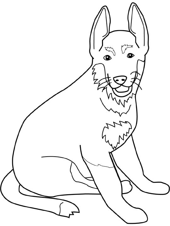 German Shepherd coloring #17, Download drawings