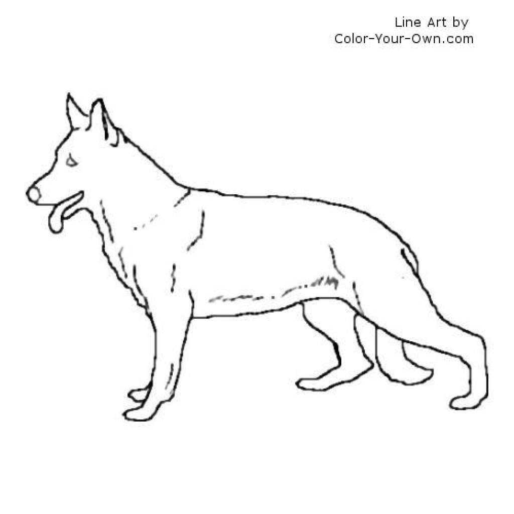 German Shepherd coloring #10, Download drawings