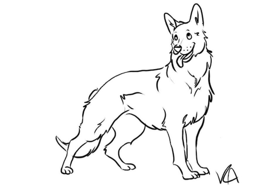 German Shepherd coloring #3, Download drawings