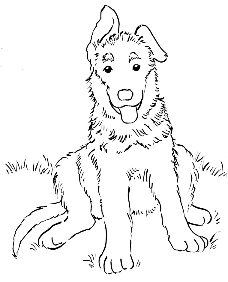 German Shepherd coloring #19, Download drawings