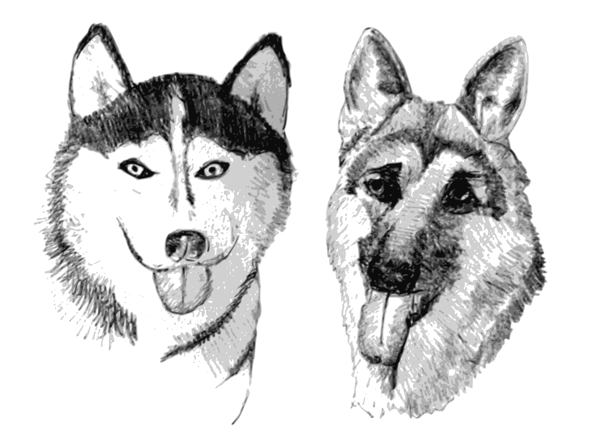 German Shepherd svg #11, Download drawings