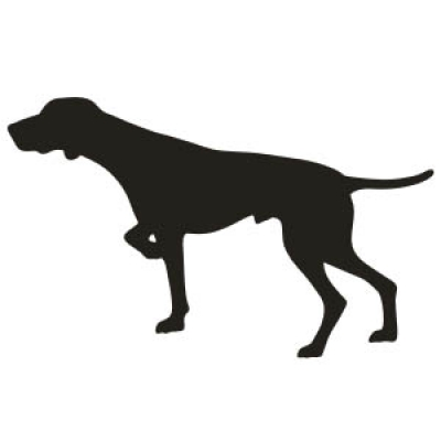 German Shorthaired Pointer clipart #1, Download drawings