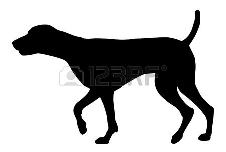 German Shorthaired Pointer clipart #5, Download drawings