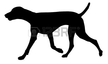German Shorthaired Pointer clipart #13, Download drawings