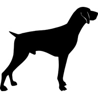 German Shorthaired Pointer svg #14, Download drawings