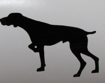 German Shorthaired Pointer svg #17, Download drawings
