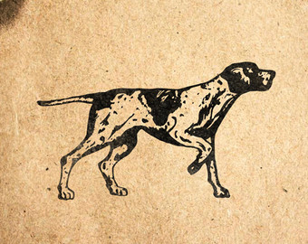 German Shorthaired Pointer svg #15, Download drawings