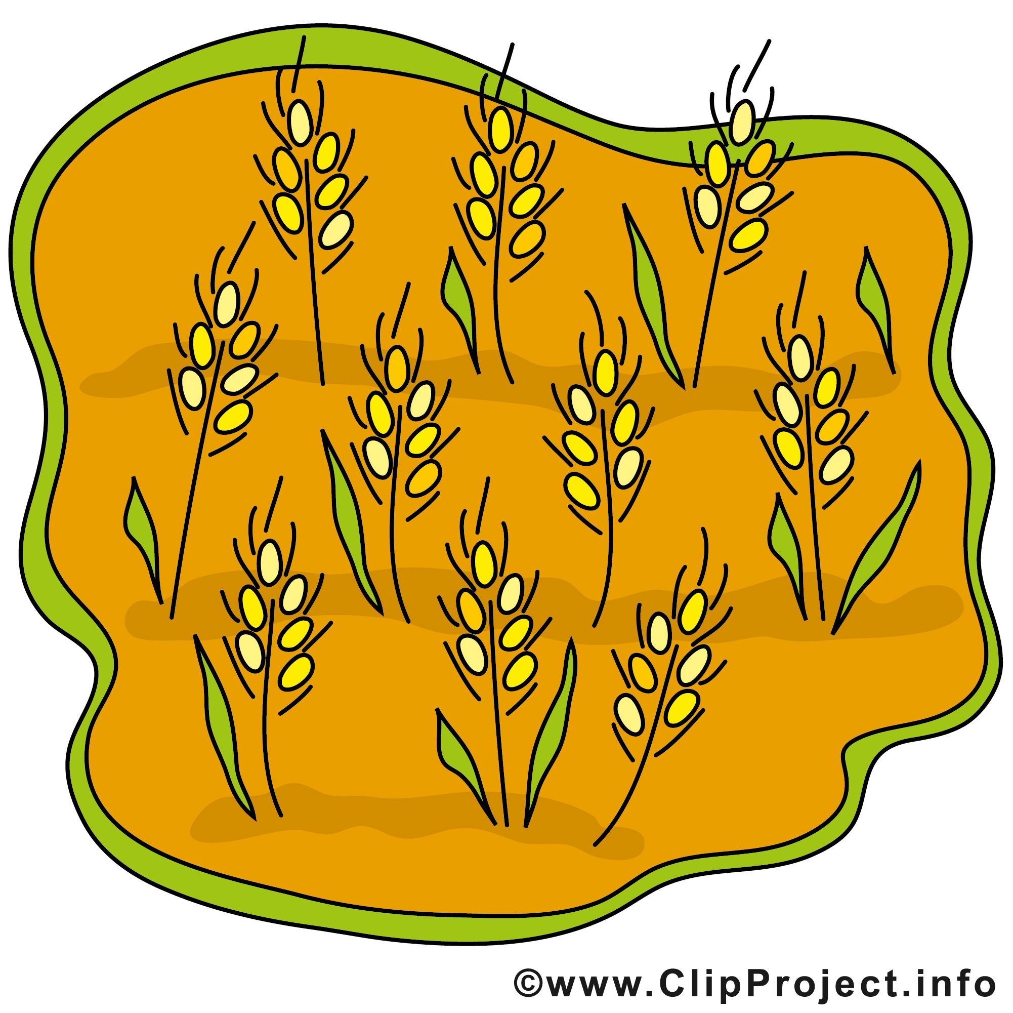 Getreide clipart #1, Download drawings