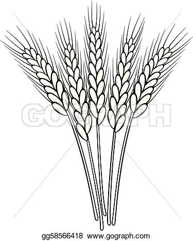 Getreide clipart #3, Download drawings