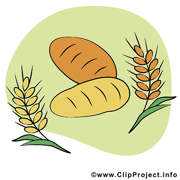 Getreide clipart #2, Download drawings