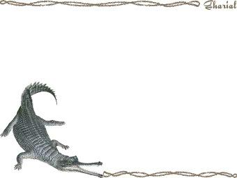 Gharial clipart #1, Download drawings