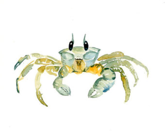 Ghost Crab clipart #1, Download drawings