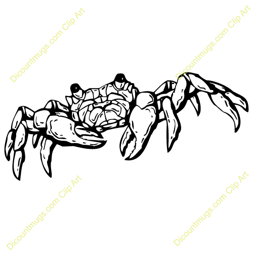 Ghost Crab clipart #2, Download drawings
