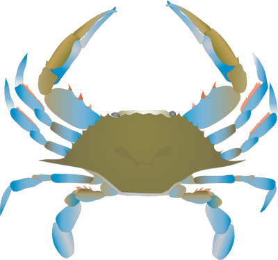 Ghost Crab svg #2, Download drawings