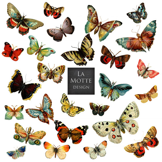 Ghost Moth clipart #5, Download drawings