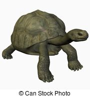 Giant Tortoise clipart #11, Download drawings