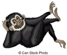 Gibbon clipart #19, Download drawings