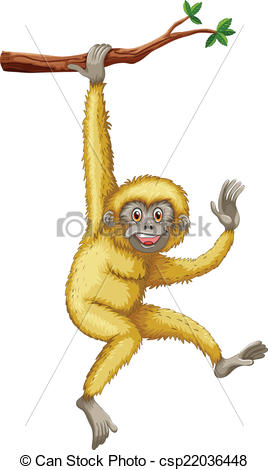 Gibbon clipart #11, Download drawings