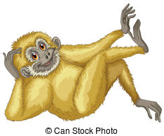 Gibbon clipart #20, Download drawings