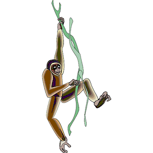 Gibbon clipart #16, Download drawings