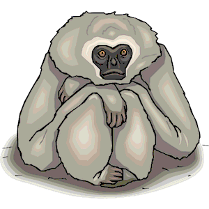 Gibbon clipart #5, Download drawings