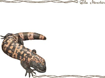 Gila Monster clipart #2, Download drawings
