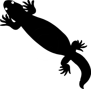 Gila Monster clipart #8, Download drawings