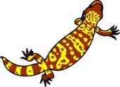 Gila Monster clipart #20, Download drawings