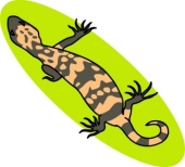 Gila Monster clipart #15, Download drawings