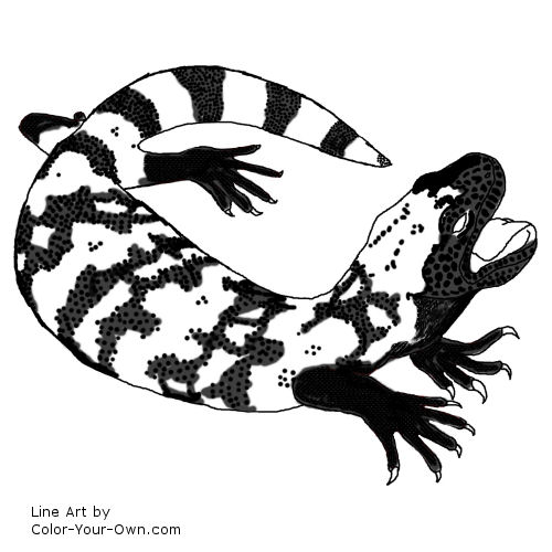 Gila Monster clipart #16, Download drawings