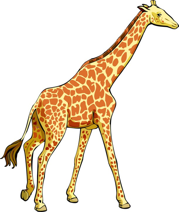 Giraffe clipart #11, Download drawings