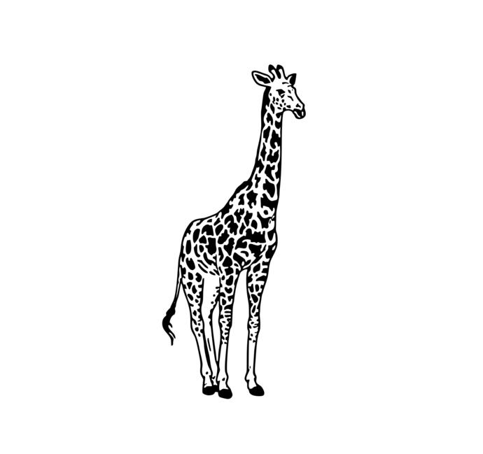 Giraffe svg #10, Download drawings