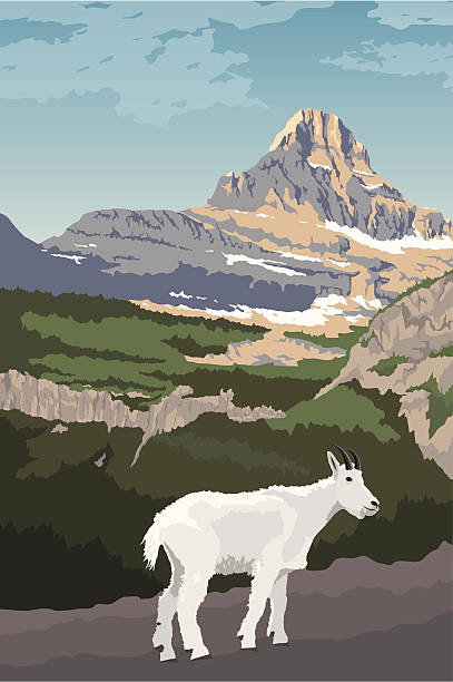 Glacier National Park clipart #10, Download drawings