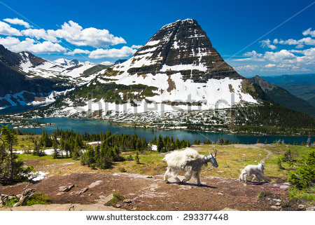 Glacier National Park clipart #3, Download drawings
