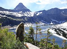 Glacier National Park svg #10, Download drawings