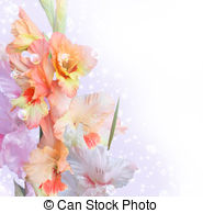 Gladiolus clipart #14, Download drawings