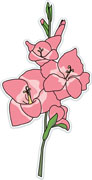 Gladiolus clipart #15, Download drawings
