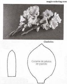 Gladiolus svg #7, Download drawings